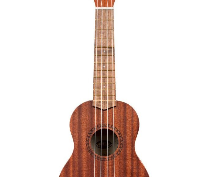 Online shopping – ukuleles at low prices